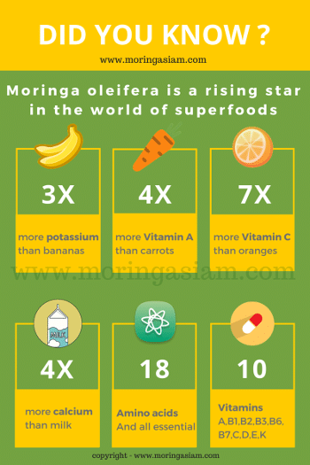 moringa nutritive information