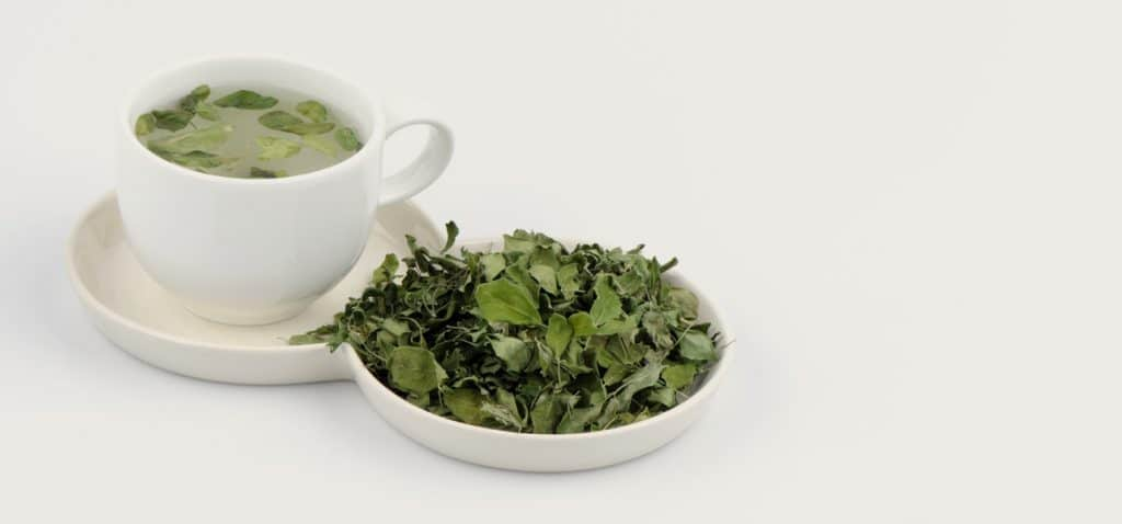 Moringa-tea-benefits-leaves