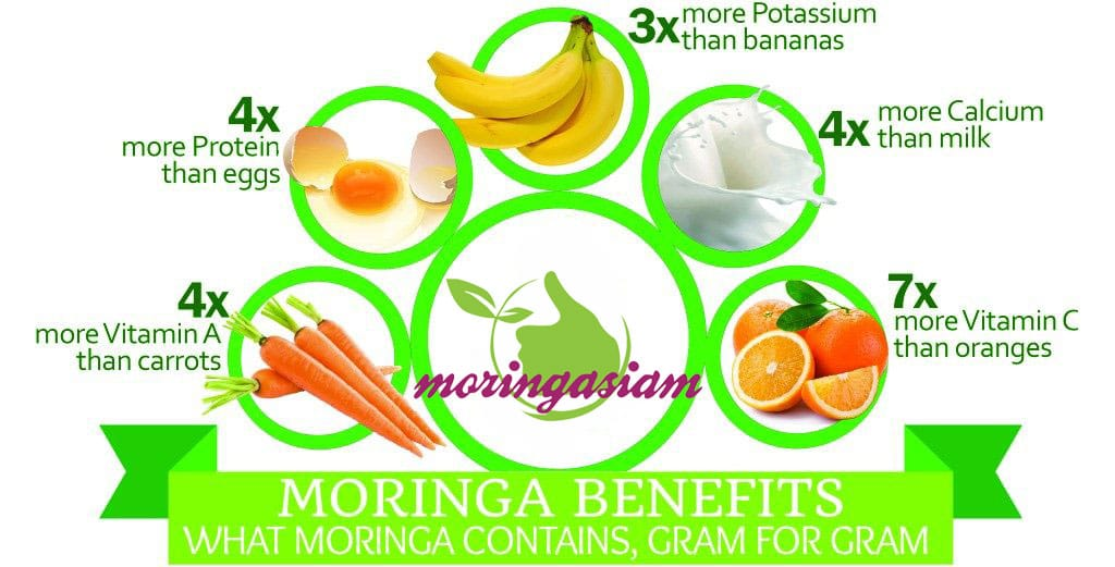 moringa nutrients