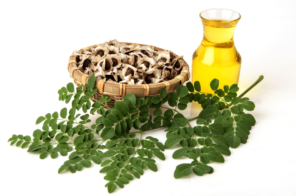 Moringa Oil: A Detailed Overview