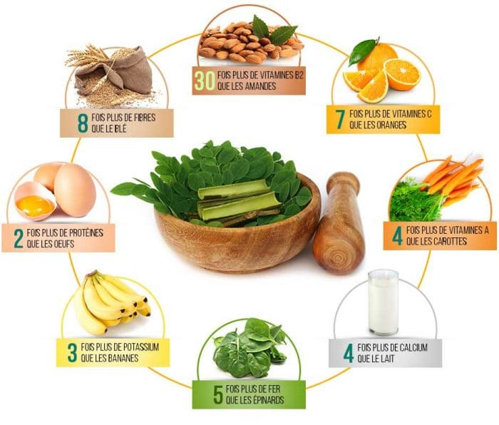 Informations Nutritives Du Moringa